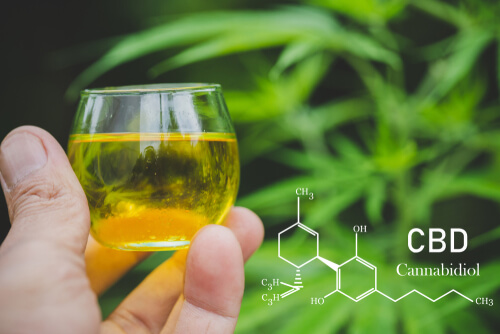 Why Do Students Use CBD Even Amid It And COVID-19-Related Myths?