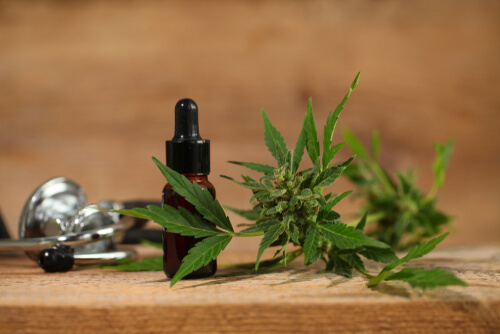 Things You Need To Know About Topical CBD Oil
